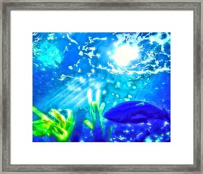 Under The Sea Illumination Framed Print by Tracie Kaska