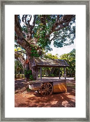 Under The Shadow Of The Tree. Eureka. Mauritius Framed Print by Jenny Rainbow