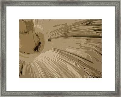 Under The Shroom Framed Print
