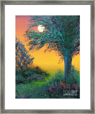 Under The Solstice Moon Framed Print by Alys Caviness-Gober