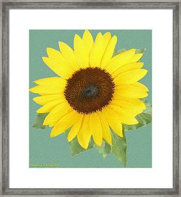 Under The Sunflower's Spell Framed Print by Patricia Keller