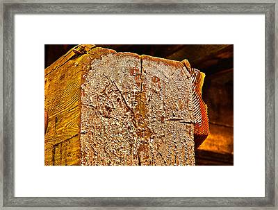 Framed Print featuring the photograph Under The Tracks by Lena Wilhite
