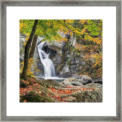 Under The Tree Square Framed Print