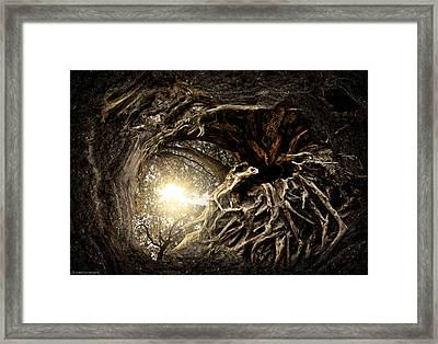 Under The Trees #1 Framed Print