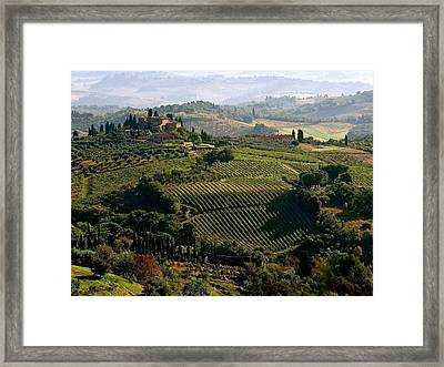 Under The Tuscan Sun Framed Print by Ira Shander