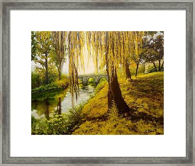 Under The Willow Framed Print by Svetla Dimitrova