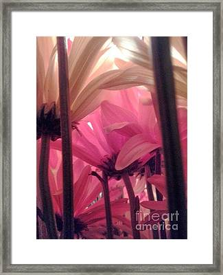 Underbush  Framed Print