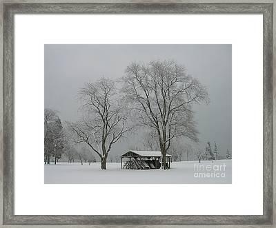 Undercover-waiting For Spring Framed Print by Avis  Noelle
