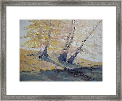 Undercut Bank Framed Print
