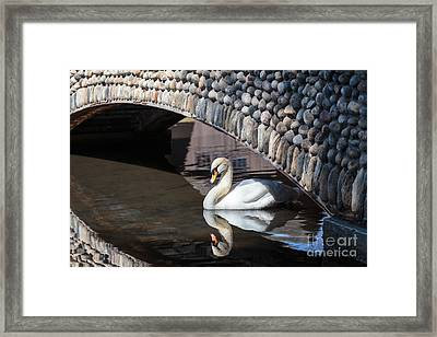 Underneath The Arch Framed Print
