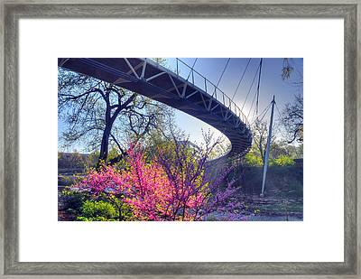 Underneath The Liberty Bridge In Downtown Greenville Sc Framed Print
