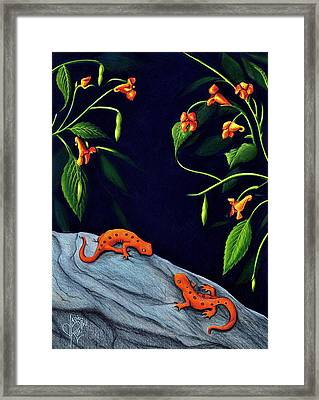 Understory Framed Print by Danielle R T Haney