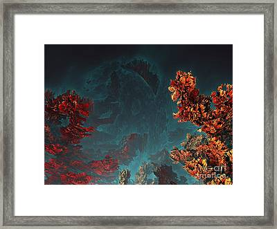 Underwater 5 Framed Print by Bernard MICHEL