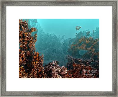 Underwater 6 Framed Print by Bernard MICHEL
