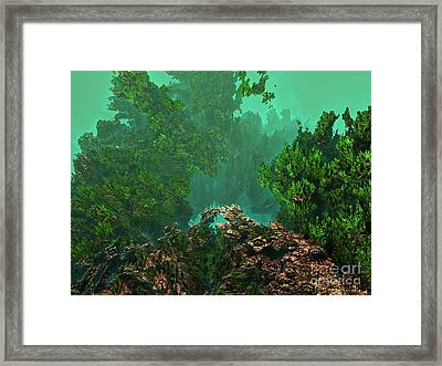 Underwater 8 Framed Print by Bernard MICHEL