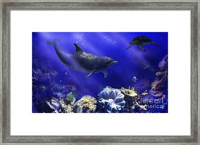 Underwater Encounter Framed Print