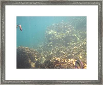 Underwater - Long Boat Tour - Phi Phi Island - 011381 Framed Print by DC Photographer