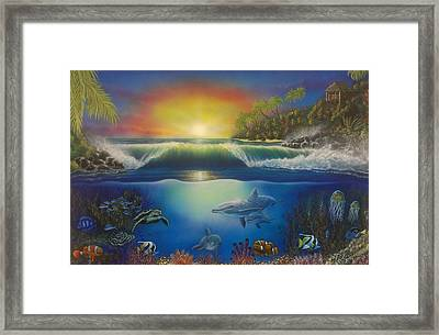 Underwater Paradise Framed Print by Darren Robinson