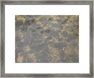 Underwater River Rock Framed Print by Erica  Darknell
