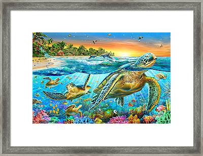 Underwater Turtles Framed Print by Adrian Chesterman