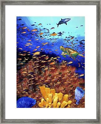 Underwater Wonderland Framed Print by David Wagner