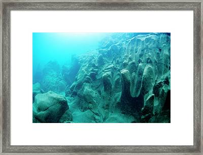 Underwaterpicture In A River In Austria Framed Print by Thomas Aichinger