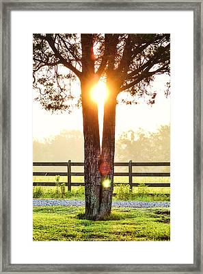 Unexpected Places Framed Print by Shelby  Young