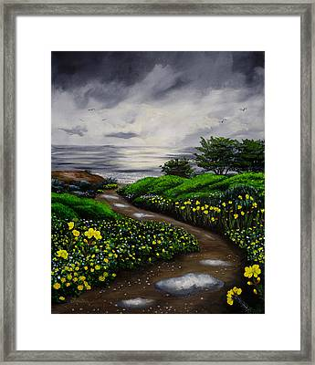 Unexpected Summer Rain Framed Print by Laura Iverson
