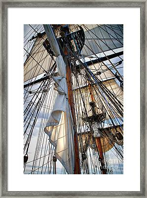 Unfurl The Sails Framed Print by Norma Warden