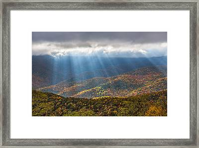 Unfurled Autumn Splendor Framed Print by Carl Amoth