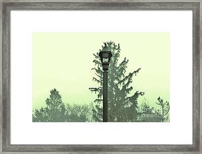 Unique Lamp Framed Print by Jamie Potter