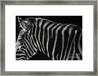 Unique Similarity Framed Print