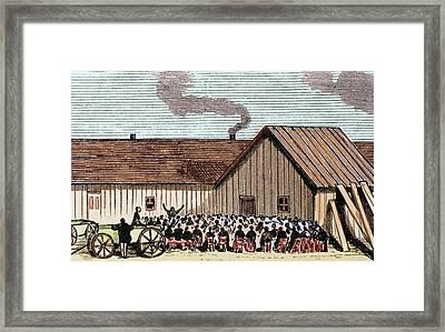 United States Kansas Mennonite Framed Print by Prisma Archivo