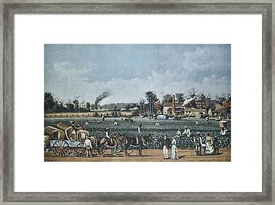United States S. Xix. Econom�a Framed Print by Everett
