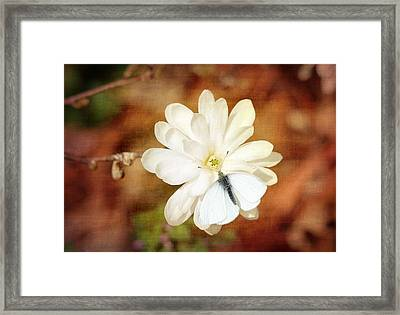 Framed Print featuring the photograph Unity by Trina  Ansel