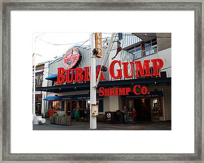 Universal Gump Framed Print by David Nicholls