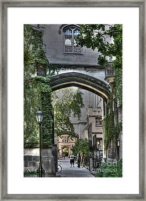University Of Chicago Quad Framed Print by David Bearden