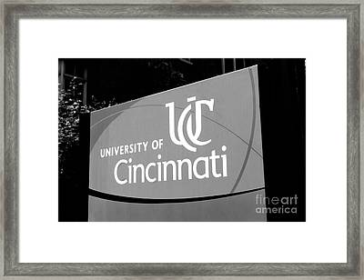 University Of Cincinnati Sign Black And White Picture Framed Print by Paul Velgos