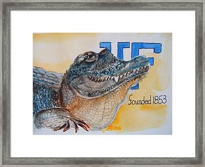 University Of Florida Framed Print by Elaine Duras