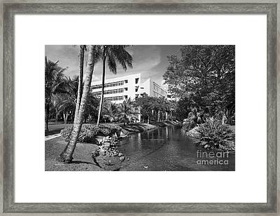 University Of Miami School Of Business Administration  Framed Print by University Icons