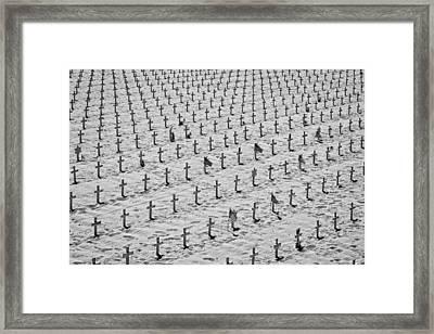 Unknown Soldiers - A Memorial To Our Fallen Heroes Framed Print