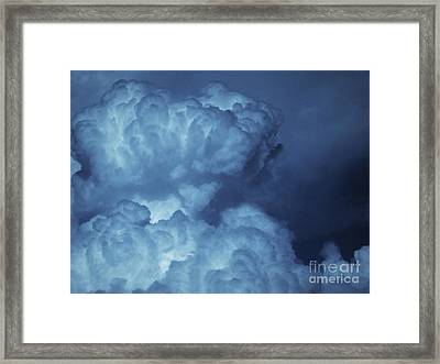 Framed Print featuring the photograph Unleashed by Ellen Cotton