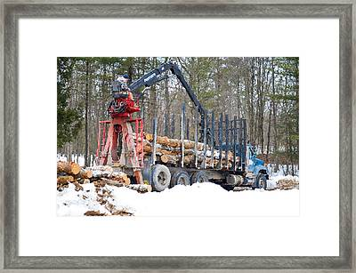 Unloading Firewood 2 Framed Print by Lanjee Chee