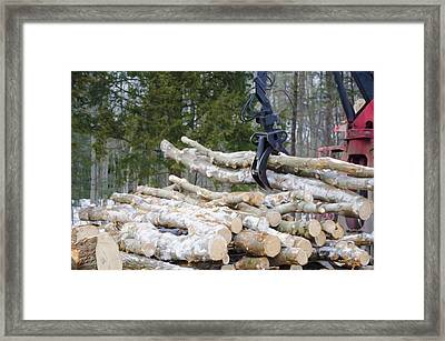 Unloading Firewood 4 Framed Print by Lanjee Chee