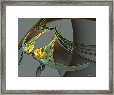 Fin And Wings Framed Print