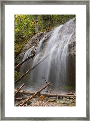 Unnamed Waterfall In Jasper National Park Framed Print by Dan Jurak