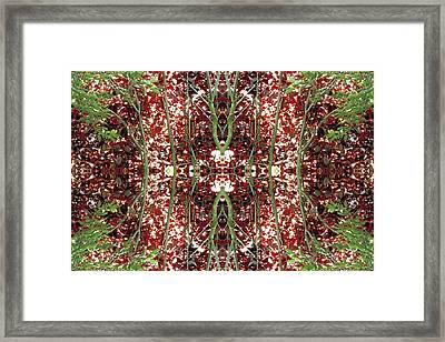 Unnatural 23 Framed Print