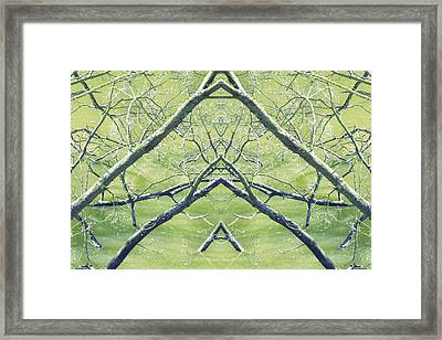 Unnatural 30 Framed Print by Giovanni Cafagna