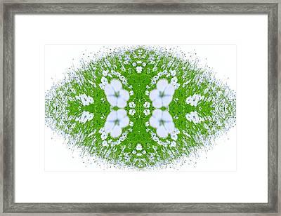 Unnatural 37 Framed Print