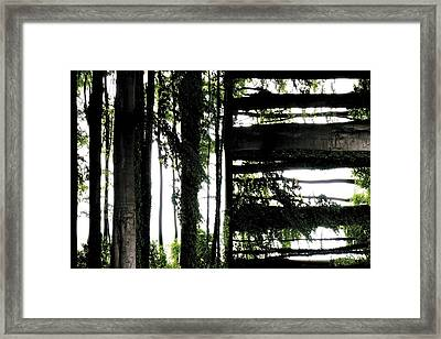 Unnatural 55 Framed Print